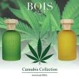Cannabis Fruttata